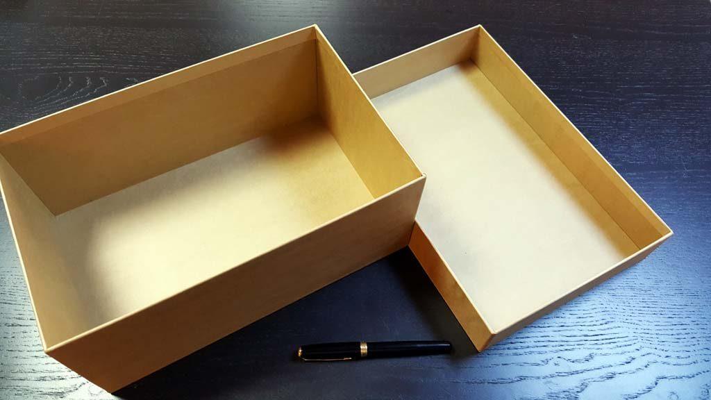 Cutia rigida cu capac pentru pantofi - 3